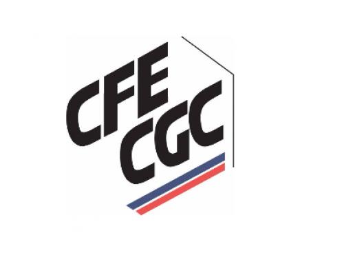 Revues de Presse CFE-CGC 2019